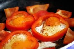 Kłusujący jajka zdjęcie royalty free