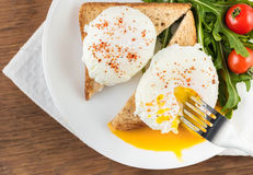 Kłusujący jajka zdjęcia royalty free