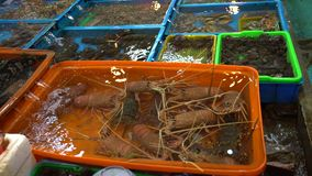 4K亚洲传统海鲜市场立场卖新鲜食品在富士鱼市上 股票录像