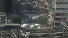 4K人群行人交叉路鸟瞰图在涩谷交叉点东京 股票视频