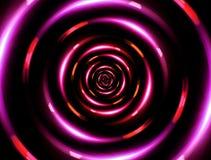 4K圆环红色玫瑰 免版税库存照片