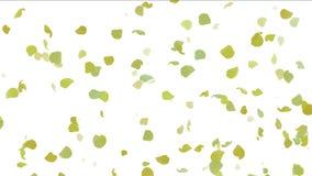4k在秋天,浪漫收获,银杏树微粒背景,花瓣离开 皇族释放例证