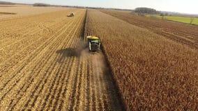 4k巨大的农业组合空中寄生虫射击加工收获在农田的卡车车庄稼有机麦子 股票录像