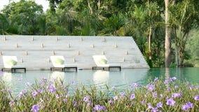 4K录影 在一个游泳池附近的活动靠背扶手椅与自然绿化树背景和美丽的花在前景,波浪水  影视素材