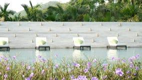 4K无缝的录影 在一个游泳池附近的活动靠背扶手椅与自然绿化树背景和美丽的花在前景 影视素材