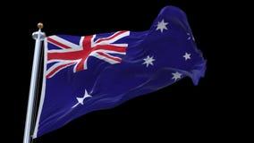 4k无缝的澳大利亚沙文主义情绪在风 包括的阿尔法通道 库存例证