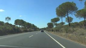 4K汽车在高速公路方向驾驶到Doñana国立公园,自然储备 股票视频