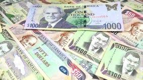 4k牙买加货币-银行业务和经济稳定概念 影视素材