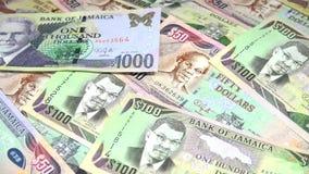 4k牙买加货币-银行业务和经济稳定概念 股票录像