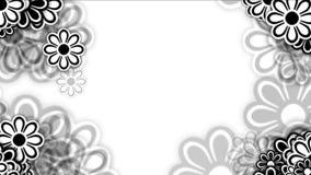 4k狂放的雏菊花瓣,春天植物绽放,言情爱婚礼背景 库存例证
