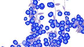 4k生长春天雏菊迎春花花分支植被植物 库存例证