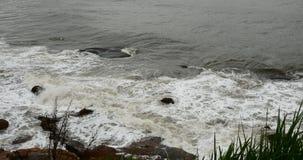 4k闪耀的海洋海水挥动surface&coastal岩石礁石海岸浪涌岸 股票录像