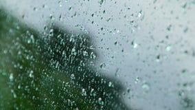 4K雨在玻璃落下 股票视频
