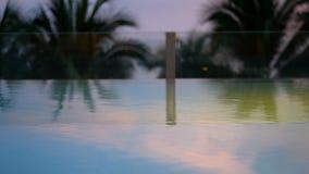 4K,关闭摇摆的可可椰子树离开或从海风的叶主脉在晚上时间在日落,圈以后 池游泳伞水 股票视频