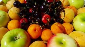 4K,各种各样的新鲜水果、苹果、杏子、樱桃和hylas haqqında接近的看法  股票录像