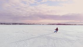 4K εναέριος χειμερινού ακραίος αθλητισμού αγώνας ανταγωνισμού χιονιού kiting με τους διαφορετικούς ζωηρόχρωμους χιόνι-ικτίνους, σ απόθεμα βίντεο