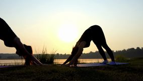 4k - Δύο Women do Dog-Face-Down Yoga άσκηση στο ηλιοβασίλεμα σε μια ακτή λιμνών απόθεμα βίντεο