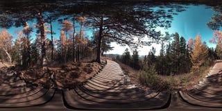 4K 360 εικονική πραγματικότητα VR μιας όμορφης σκηνής βουνών στο χρόνο φθινοπώρου Άγρια ρωσικά βουνά φιλμ μικρού μήκους
