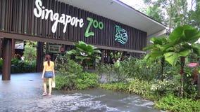 4k, επισκέπτες ανθρώπων στην είσοδο στο ζωολογικό κήπο της Σιγκαπούρης απόθεμα βίντεο