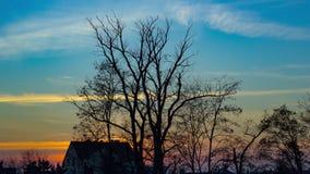 4K ηλιοβασίλεμα φθινοπώρου χρονικού σφάλματος φιλμ μικρού μήκους