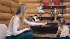 4k: Η νέα μητέρα και λίγη γλυκιά κόρη παίζουν με τα γατάκια, φιλμ μικρού μήκους