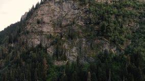 4k - η πτήση κηφήνων κατά μήκος ενός υψηλού δύσκολου βουνού με τα κωνοφόρα δέντρα φιλμ μικρού μήκους