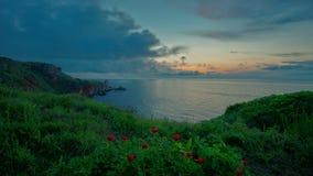 4k θαυμάσια seascape άποψη με τα άγρια peonies στην παραλία στην επιφύλαξη Yailata, Βουλγαρία απόθεμα βίντεο