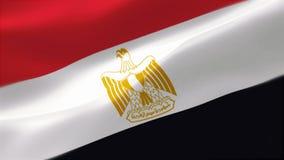4k ιδιαίτερα λεπτομερούς σημαία της Αιγύπτου διανυσματική απεικόνιση