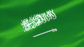 4k ιδιαίτερα λεπτομερούς σημαία του βασίλειου της Σαουδικής Αραβίας διανυσματική απεικόνιση