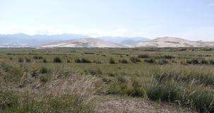 4k μακριά τοπίο αμμόλοφων & λιβαδιών άμμου ερήμων, landform οροπέδιων, Qinghai, βορειοδυτική Κίνα απόθεμα βίντεο