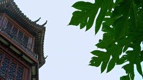 4K μεγάλο σπίτι με την ιαπωνική αρχιτεκτονική, ξύλο μορίων οικοδόμησης απόθεμα βίντεο