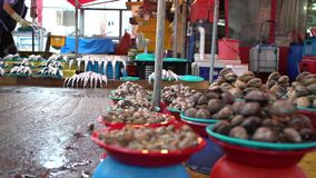 4K ο νοτιοκορεατικός πωλητής πωλεί τα μαλάκια στην αγορά ψαριών Jagalchi σε Busan απόθεμα βίντεο
