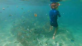 4k ο σε αργή κίνηση πυροβολισμός ενός μικρού αγοριού που κολυμπά με ανα φιλμ μικρού μήκους