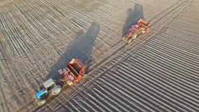 4K Πτήση επάνω από τους πρόσφατα καλλιεργημένους τομείς στο ηλιοβασίλεμα με τα γεωργικά μηχανήματα, εναέρια άποψη φιλμ μικρού μήκους