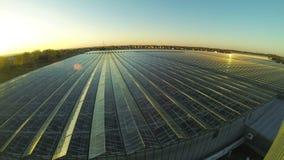 4k στέγη Timelapse του βιομηχανικού θερμοκηπίου απόθεμα βίντεο