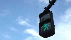 4K της Ασίας πράσινο φως κυκλοφορίας πόλεων του Τόκιο σημαδιών διαβάσεων πεζών που φωτίζεται για τους πεζούς απόθεμα βίντεο
