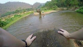4K τοπ άποψη του ασιατικού ελέφαντα ενώ οι τουρίστες ομαδοποιούν το γύρο μέσω του ποταμού απόθεμα βίντεο