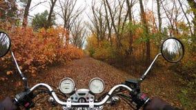 4K Φανταστικός γύρος μοτοσικλετών στο δρόμο στην πορτοκαλιά δασική, ευρεία άποψη φθινοπώρου του αναβάτη Κλασικός μπαλτάς για πάντ απόθεμα βίντεο
