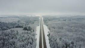 4K Дорога в замороженном лесе зимы с управлять автомобилями воздушный панорамный взгляд Исчезая перспектива пункта видеоматериал
