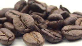4k зажарило в духовке кофейные зерна вращает на белой предпосылке Ингредиент для кофе акции видеоматериалы