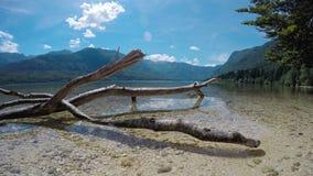 4K Изумляя озеро Bohinj в лете, взгляде промежутка времени панорамном Джулиан Альпы, национальный парк Triglav, Словения, Европа видеоматериал