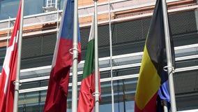 4K Некоторые флаги стран Европейского союза развевают Европейский квартал акции видеоматериалы