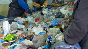 4K Работники сортируя отброс, который нужно обрабатывать в заводе по переработке вторичного сырья