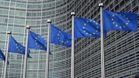 4K Флаги Европейского союза в ряд развевая в ветре, европейской комиссии сток-видео