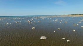 4K 在海的飞行有站立在水和飞鸟,鸟瞰图的石头的 股票视频