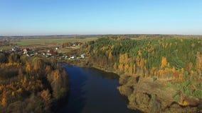 4K 在湖和森林的飞行在金黄秋天,鸟瞰图 股票视频