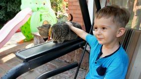 4k 3岁英尺长度小孩男孩爱抚的猫坐庭院长凳 影视素材