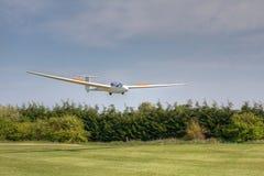 K21横跨树的滑翔机着陆 库存图片