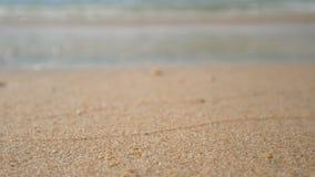 4K 海的软的波浪,在沙子的焦点 在白色沙子海滩的清楚的水与拷贝空白区 热带夏天海海滩 影视素材