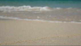 4K 海的软的波浪,在白色沙子海滩的清楚的水与拷贝空白区 夏天假日背景的海海滩 股票视频